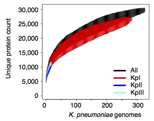 Kp_pan_genome