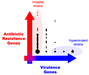 resistance-virulence-axis-2