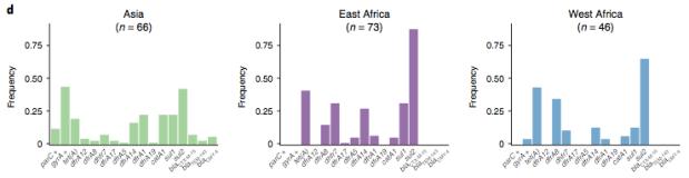 region gene prevalence